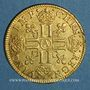 Monnaies Louis XIII (1610-1643). Louis d'or 1641 A. Type avec mèche longue, baies et IMP*