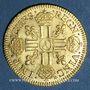 Monnaies Louis XIII (1610-1643). Louis d'or 1642A. Type avec mèche mi-longue et baies
