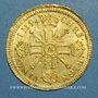 Monnaies Louis XIV (1643-1715). Louis d'or aux 8 L et aux insignes 1701 A. Réformation