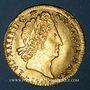 Monnaies Louis XIV (1643-1715). Louis d'or aux 8L et aux insignes 1701 B. Rouen. Réformation !