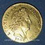 Monnaies Louis XIV (1643-1715). Louis d'or aux 8L et aux insignes 1702A. Rouen. Réformation !