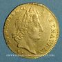 Monnaies Louis XIV (1643-1715). Louis d'or aux insignes 1704 A. Réformation