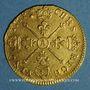 Monnaies Louis XIV (1643-1715). Louis d'or aux insignes 1704A. Réformation