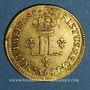 Monnaies Louis XV (1715-1774). Louis d'or aux 2 L 1720 A. Réformation
