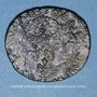 Monnaies Louis XIII (1610-1643). Douzain illégal émis par les Huguenots et refrappé  sur un double tournois