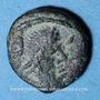 Monnaies Les Vandales. Hildéric (523-530). Nummus bronze