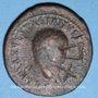 Monnaies Les Vandales. Hunéric (477-484) à Trasamund (496-523). 42 numi (XLII) regravé sur un as de Titus