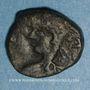Monnaies Les Vandales. Trasamund (496-523). Nummus bronze