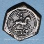 Monnaies Pays Bas du Sud. Poids monétaire au cavalier ou ridder de Flandre, créé par Philippe le Bon
