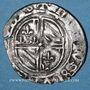 Münzen Duché de Bourgogne. Philippe le Bon (1419-1467). Double tournois. Auxonne(?)