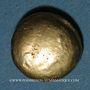 Münzen Ambiani (région d'Amiens). Vers 60 - 30/25 av J-C). Statère aux deux S