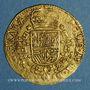 Münzen Brabant. Philippe IV (1621-1665). Souverain ou lion d'or, 1663. Bruxelles