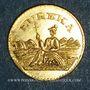 Münzen Etats Unis. Californie.  California Gold-Charm 1884
