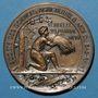 Münzen Alsace. Bas-Rhin. Société des Sciences, Agriculture et Arts du Bas-Rhin. 1899. Médaille bronze 50 mm