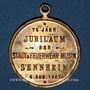 Münzen Alsace. Cernay. 75e anniversaire orchestre municipal des pompiers. 1907. Médaille bronze doré