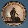 Münzen Alsace. Colmar. Concours de gymnastique. 1867. Médaille en cuivre. 42,65 mm