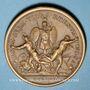 Münzen Alsace. Les Allemands chassés de l'Alsace. 1675. Médaille bronze. 41,31 mm. Refrappe