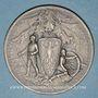 Münzen Alsace. Surveillance du territoire allemand à la frontière des Vosges. 1914-1917. Médaille en argent