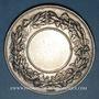Münzen Bas-Rhin. Comité régional agricole du Bas-Rhin. 1875.  Médaille argent. 45,68 mm