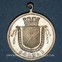 Münzen Colmar. Cortège historique. 1889. Médaille laiton argenté. 29,3 mm