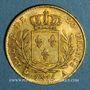 Münzen Louis XVIII (1815-1824). 20 francs buste habillé 1815A. (PTL 900‰. 6,45 g). Type avec 5 moyen