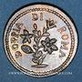 Münzen Vatican. Pie VI (1775-1799). Poids monétaire du 30 paoli