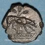 Münzen Sicile. Ségeste (412-400 av. J-C.). Didrachme