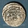 Münzen Anatolie. Aq Qoyounlu. Hasan (857-882H).  1/3 de Tanka