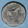 Münzen Celtibérie. Lepida-Celsa. Bronze au nom d'Auguste , 5-3 av. J-C. Contremarqué