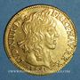 Münzen Louis XIII (1610-1643). Louis d'or 1641 A. Type avec mèche longue, baies et IMP*
