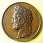 Münzen Ecole de Besançon. Prix de dessin 1841 Médaille bronze 37 mm signée Depaulis, attribution : A. Ducat