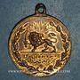 Münzen Iran. Dynastie Kadjar. Médaillette commémorative bronze 1327H (1909). 22, 5 mm