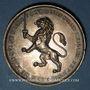 Münzen Lyon. Conseil municipal. Médaille argent