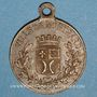 Münzen Montbard (Bourgogne). Souvenir du centenaire de la mort de Buffon. 1888. Médaille en laiton