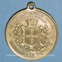 Münzen Montbéliard. Inauguration de la statue du colonel Denfert-Rochereau. 1879. Médaille laiton