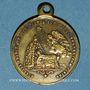 Münzen Naissance du Prince impérial. 1856. Médaille en laiton. 23,50 mm