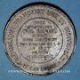 Münzen Guerre de 1870-71. Mort de Paul Richard, sous-lieutenant des mobiles de S. & O. Médaille étain 45,8