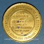 Münzen Guerre de 1870-71. Souvenir de la guerre contre la Prusse. Etain doré. 46 mm