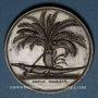 Münzen Napoléon I. Conquête de la Haute-Egypte, an VII (1799). Médaille cuivre. Refrappe (poinçon: abeille)