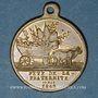 Münzen Révolution de 1848. 14 mai - Fête du Champ de Mars. Médaille cuivre. 26,28 mm