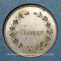Münzen Révolution de 1848. Le général Cavaignac. Médaille cuivre blanchi