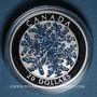 Münzen Canada. 20 dollars 2017. Flocon de neige. Rehaussée d'émail bleu-scintillant. 999,9 /1000. 31,39 g